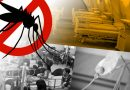 Cordillera dengue fever cases drop by 82 percent