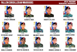 SAF WOLVERINES. These pictures should remind us not of our loss but of how these Heroes gave more chances of living our lives in peace.
