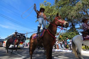 YEEHAH! A Baguio Cowboy whips his lasso as he rides his horse on his feet to the delight of the crowd and the Miss universe candidates during the mini-float and street dancing parade last January 18, 2017. Photo by RJ CAYABYAB.