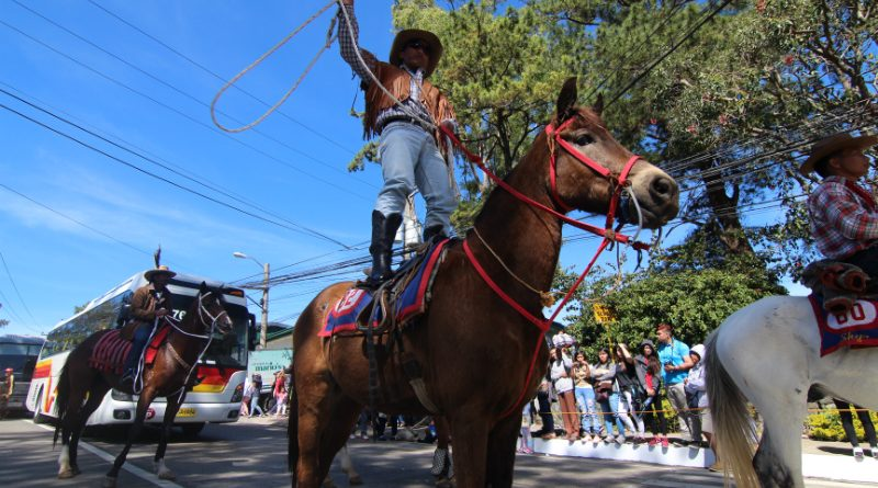 YEEHAH! A Baguio Cowboy whips his lasso as he rides his horse on his feet to the delight of the crowd and the Miss universe candidates during the mini-float and street dancing parade. Photo by RJ Cayabyab.