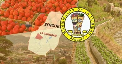 Value added for famous La Trinidad strawberry