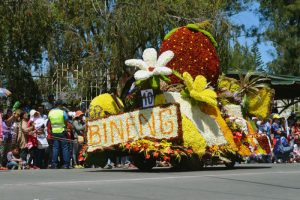 Barangay Bineng featured a giant strawberry made from red roses float during the mini-float parade of the La Trinidad 36th Strawberry Festival last March 19, 2017. (March 27, 2017) PAULYNE ANTONIO, UP Baguio Intern, PIA-CAR.