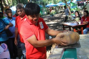 WEIGHING THE BIGGEST. Adding more excitement to the guests and visitors of the 1st Pangasinan Umaani expo held at the Provincial Agriculture Center in Tebag, Sta. Barbara from March 28 to April 1, 2017, the 'sangka' or pinaka contests held during the Agew na Umaanid Tanaman on March 30 showcased the biggest and longest fruits and vegetables and most palatable pinakbet. (April 6, 2017) Photos by Gibson Perez /MGNO